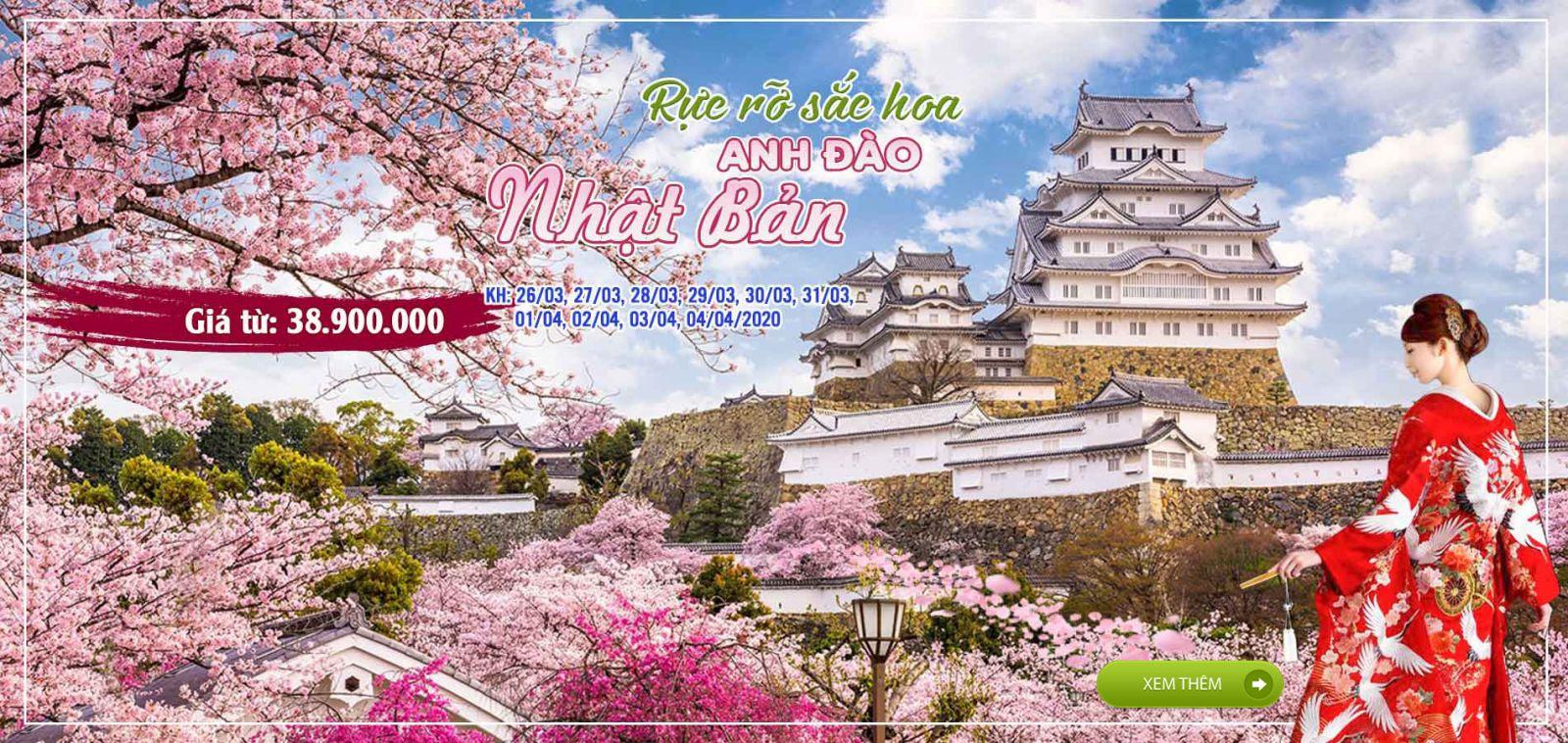 Kinh nghiệm chọn Tour Du lịch Nhật Bản mùa Hoa Anh Đào