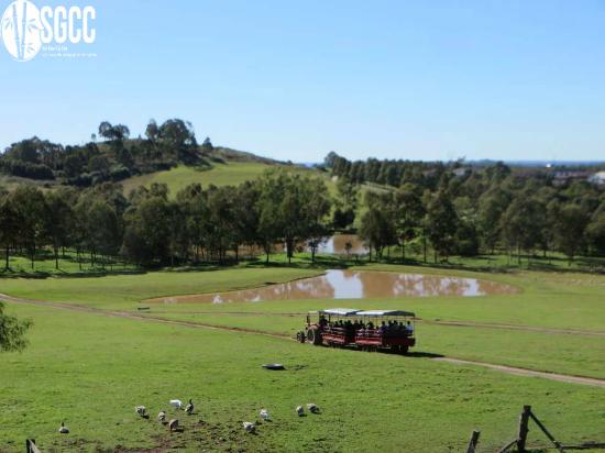 Calmsley Hill Farm