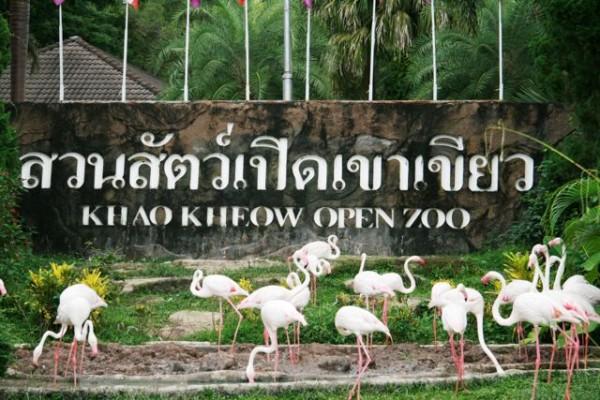 Safari Khao Kheow
