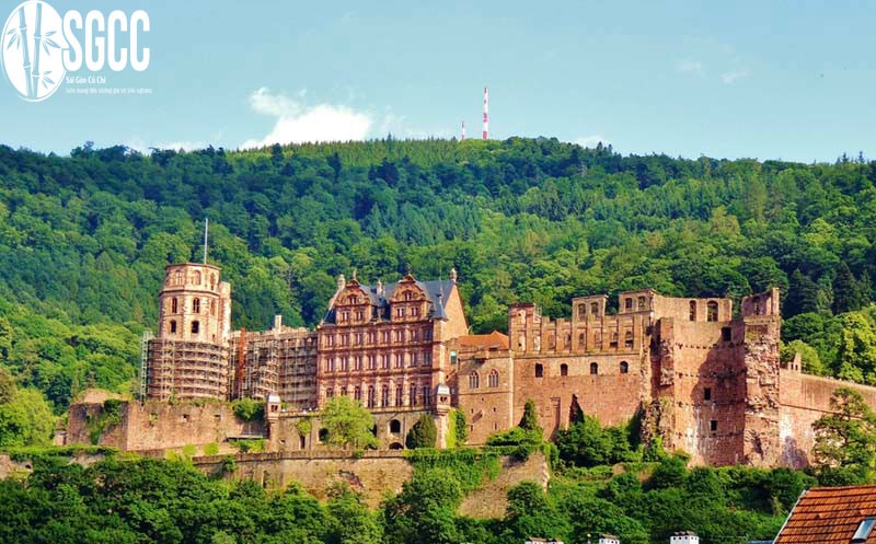 Lâu đài Heidelberg
