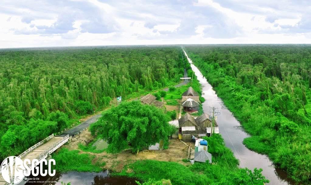 Rừng quốc gia U Minh hạ - Cà Mau