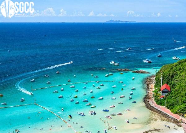 Đảo san hô