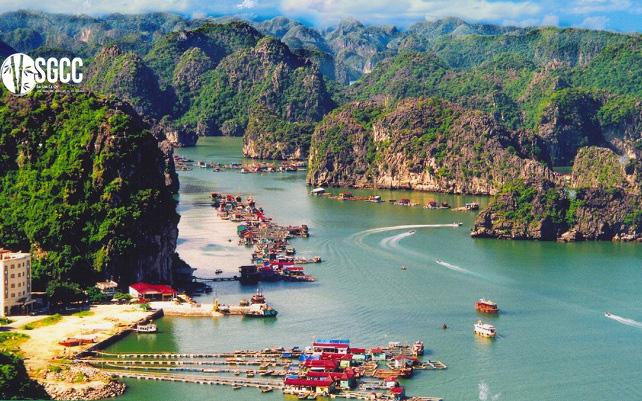 Teambuilding Khu Du Lịch Sinh Thái Cát Bà Hải Phòng