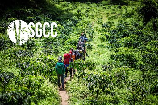 Teambuilding Vườn quốc gia Chư Yang Sin Đắk Lắk