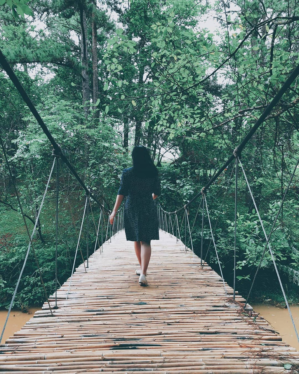 Chụp hình cực chất với 4 cây cầu dây treo tại Đà Lạt