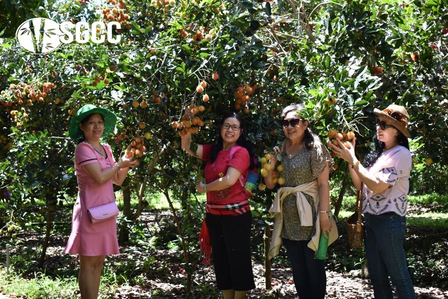 Teambuilding Khu Du Lịch Vườn Trái Cây Trung An Củ Chi