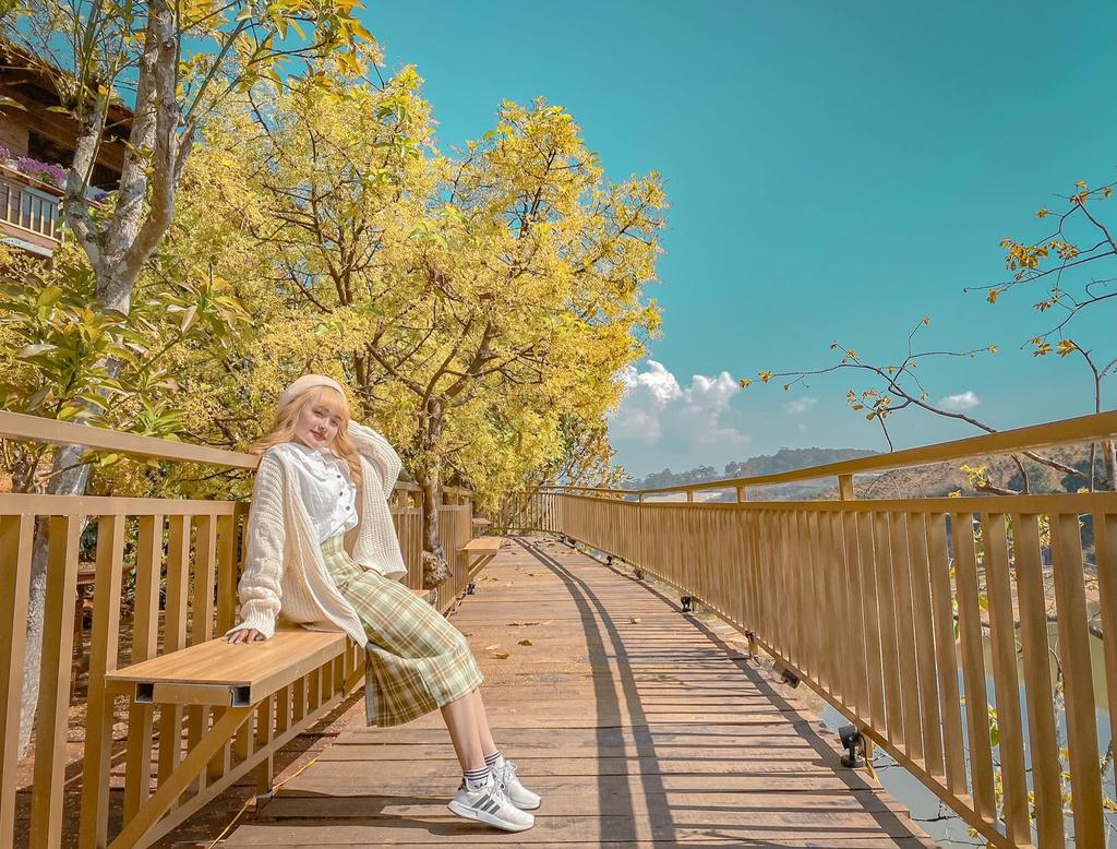Đà Lạt xuất hiện con đường Hàn Quốc đốn tim giới trẻ