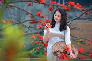 Khám phá vẻ đẹp mùa hoa gạo tháng 3