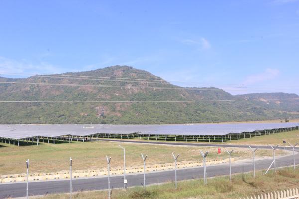 Độc đáo du lịch 'trang trại điện mặt trời'
