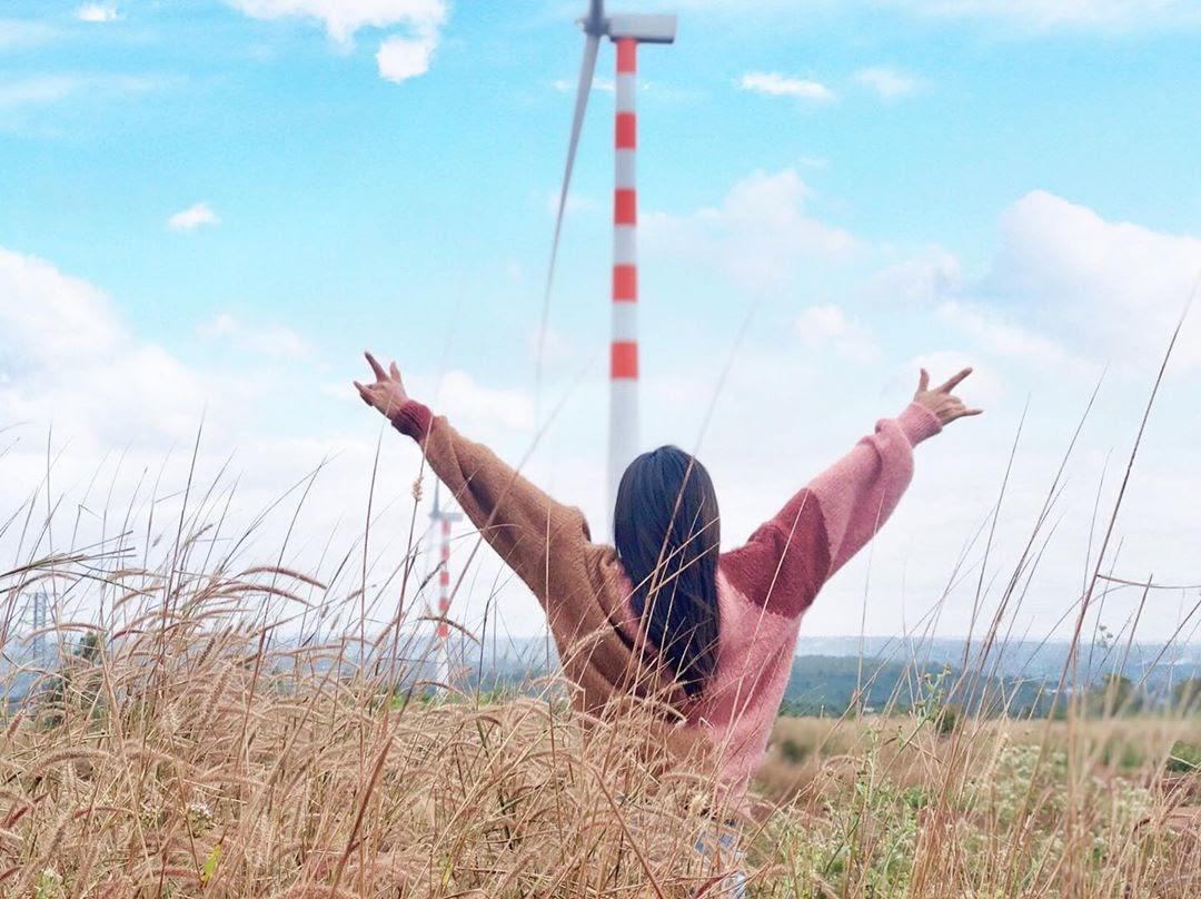 Sống ảo triệu like ở cánh đồng quạt gió Đắk Lắk đẹp tựa trời Tây