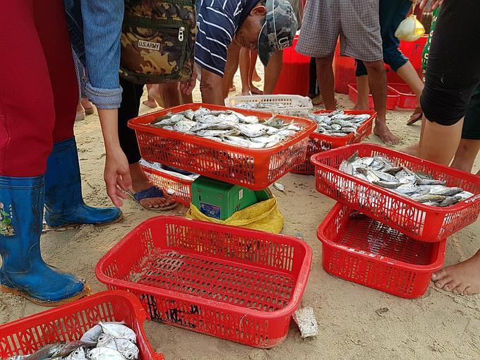 Chợ hải sản di động bên bờ biển Quảng Nam