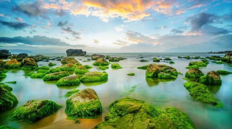 4 điểm check-in siêu chất, siêu hot ở Đà Nẵng