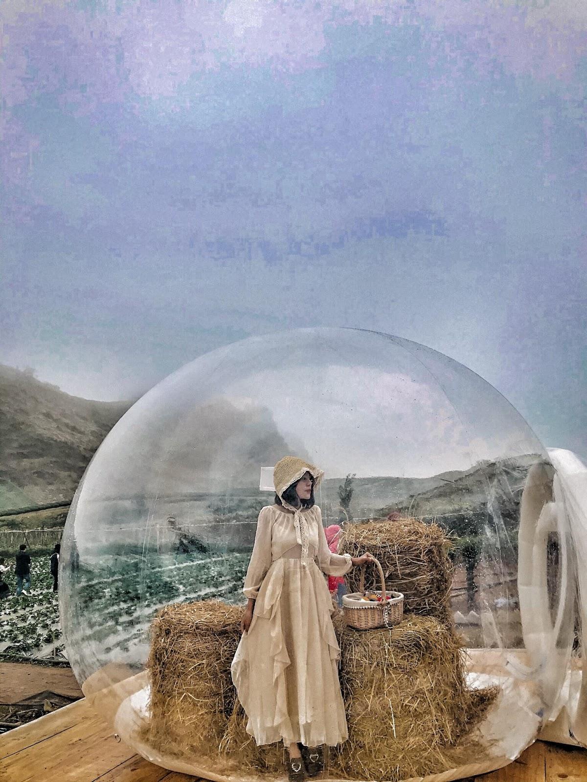 """Xuất hiện """"Ngôi nhà bong bóng"""" như ở Bali có tại Mộc Châu"""