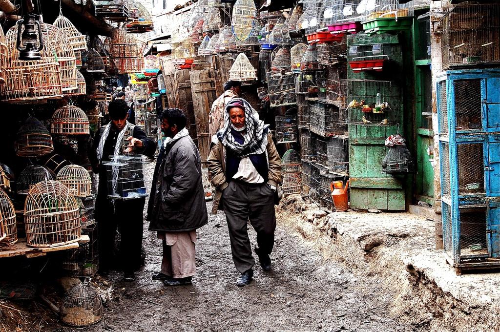 Chợ cô dâu, bùa ngải và các khu chợ khác thường nhất thế giới