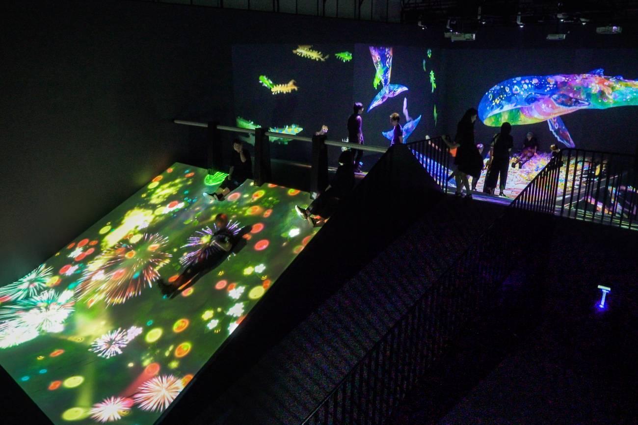 teamLab Borderless, bảo tàng kỹ thuật số bạn nhất định phải ghé 1 lần nếu đến Tokyo
