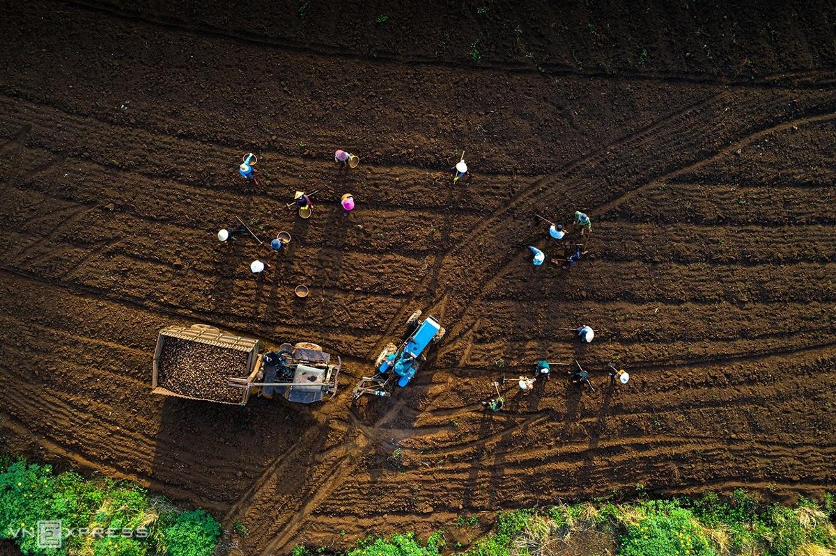 Vẻ đẹp giao mùa trên núi lửa Chư Đăng Ya