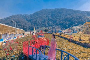 Hướng dẫn đường đến khu du lịch Vườn Thượng Uyển Bay Đà Lạt