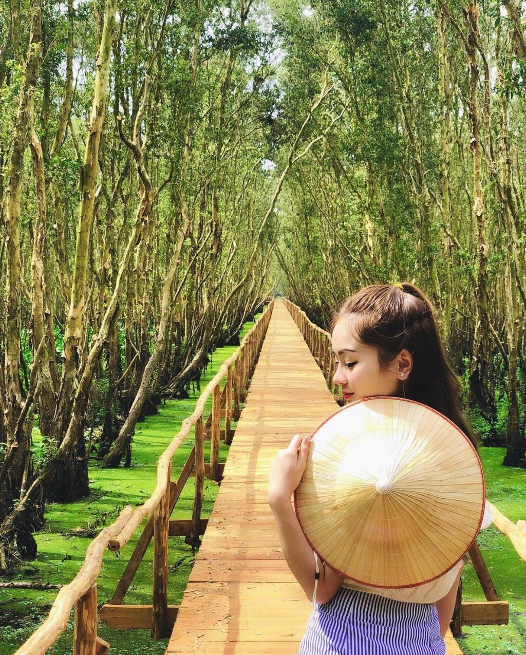 3 cánh rừng nguyên sinh miền Tây nổi tiếng trong giới xê dịch
