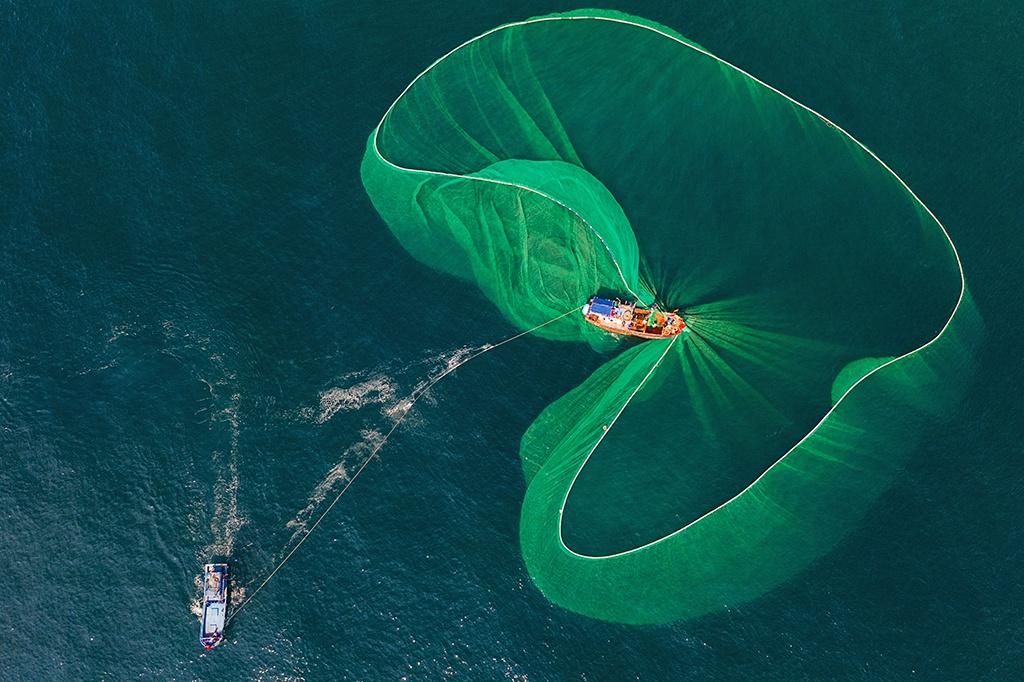 Ảnh đánh cá bằng lưới vây được khen ngợi trên 5 báo nước ngoài