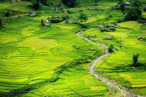 Báo nước ngoài ca ngợi bản Cát Cát mang vẻ đẹp ngoạn mục
