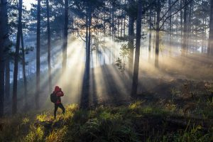 Người đi săn nắng nơi thành phố sương mờ Đà Lạt