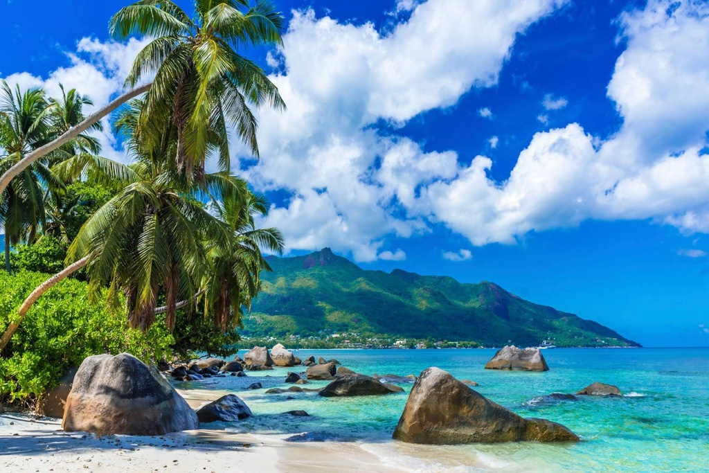 Những miền nhiệt đới xanh tươi trên khắp hành tinh