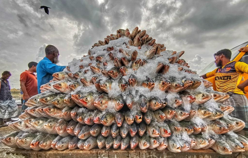 Phơi bánh tráng Trảng Bàng đạt giải ảnh ẩm thực quốc tế