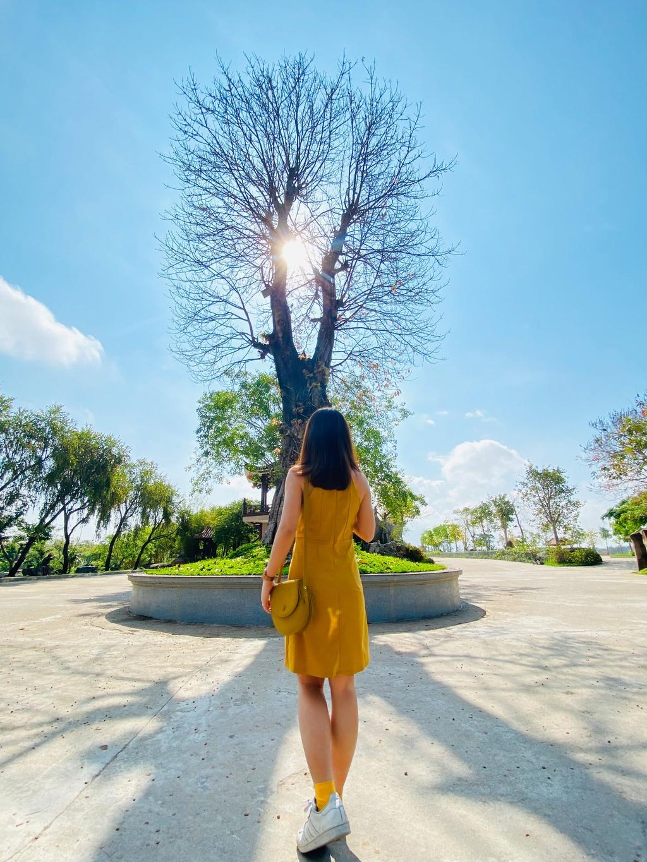 Sống ảo ở những điểm lạ mà quen khi vi vu Phú Yên, Quy Nhơn