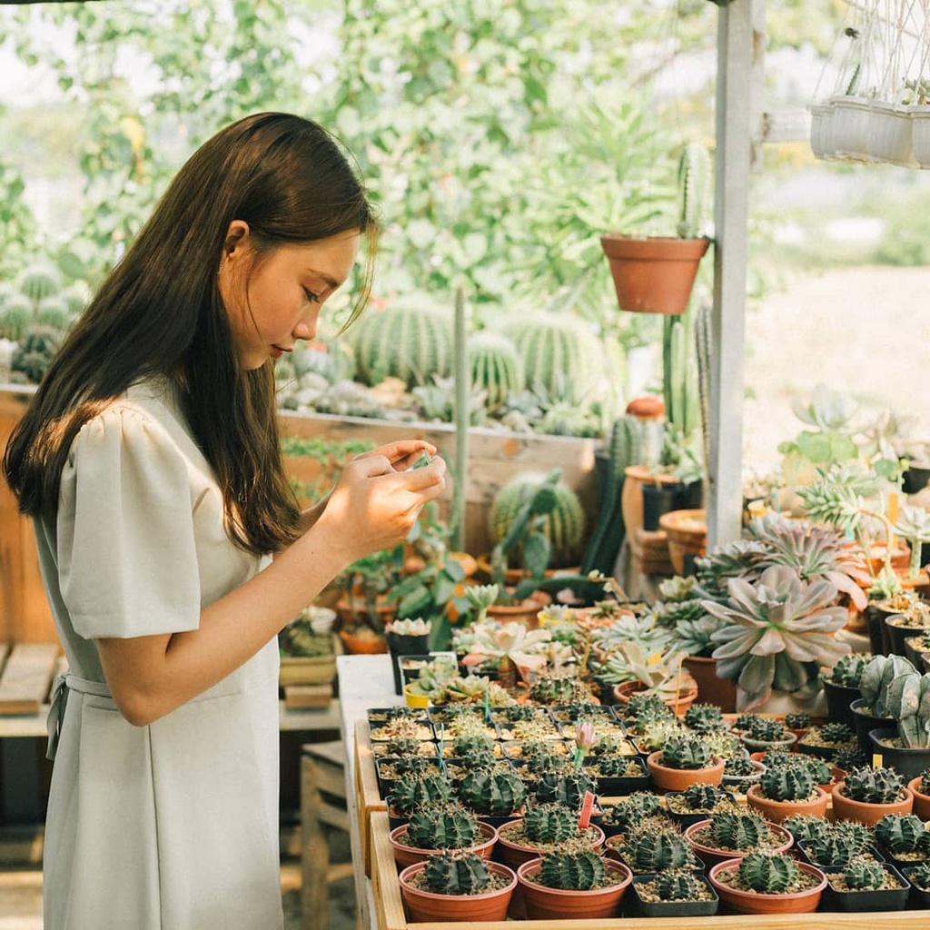 4 quán cà phê Đà Nẵng lên hình sống ảo chuẩn mùa hè