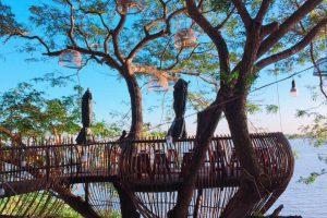 Cà phê trên cây và các quán có không gian khác lạ ở Cần Thơ