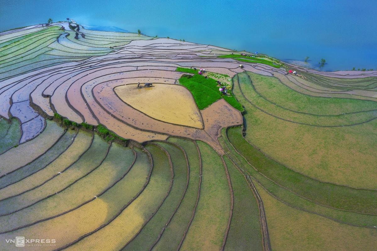 Cảnh sắc tuyệt đẹp của miền quê Việt Nam