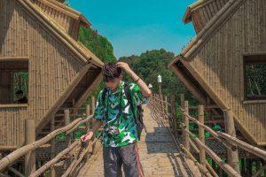 Check in ngay cây cầu tre xuyên rừng tràm dài nhất Việt Nam