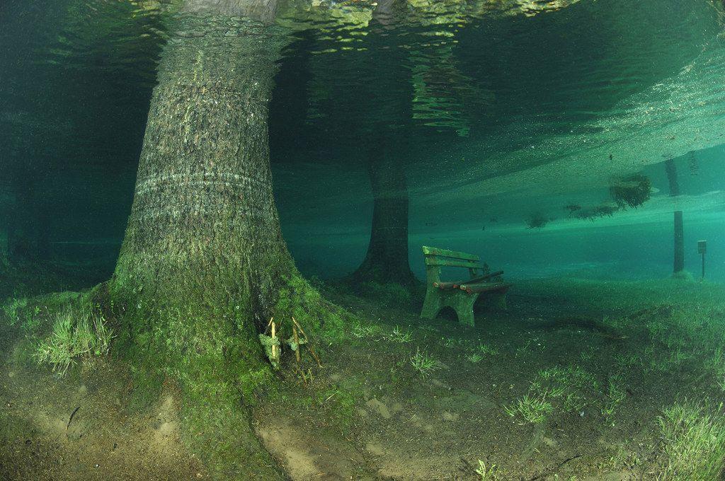 Công viên ngập trong nước vào mùa hè
