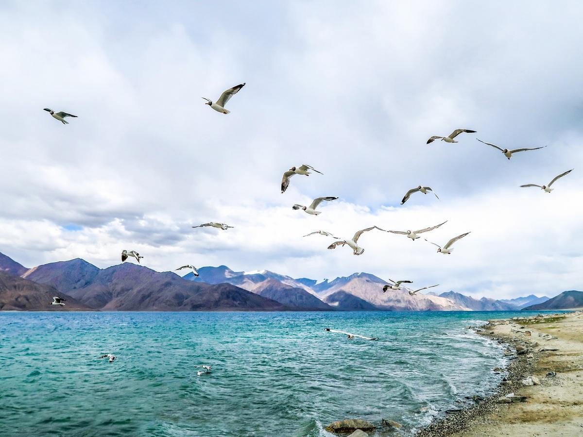 Hồ giữa biên giới Trung Quốc và Ấn Độ