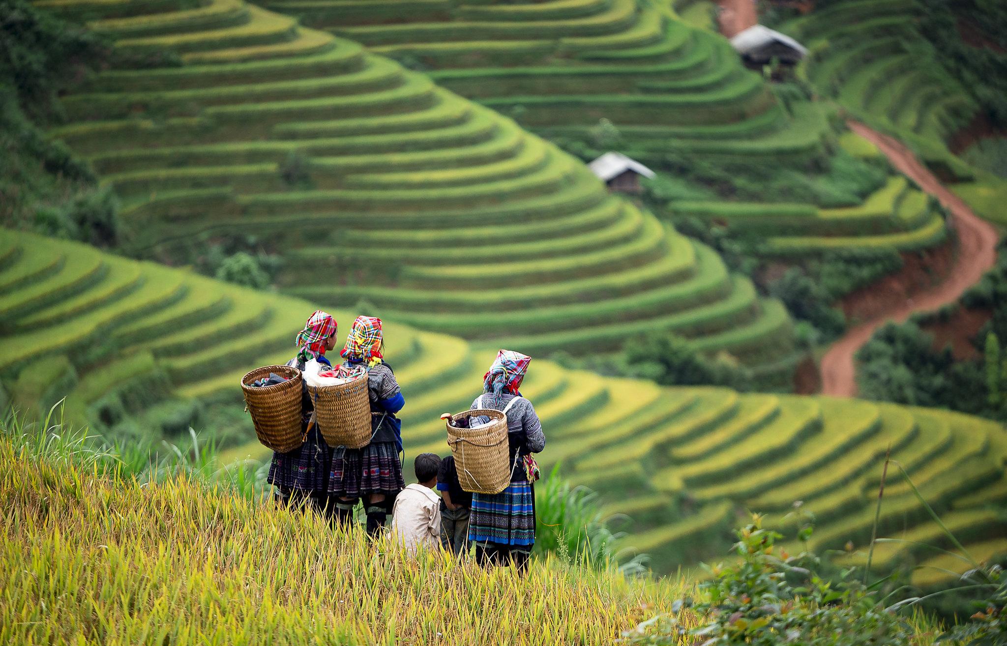 Khám phá tour du lịch Tây Bắc Mai Châu - Mộc Châu - Điện Biên - Lai Châu - Sapa