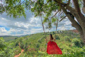 Những địa điểm sống ảo hút giới trẻ tại Đà Lạt