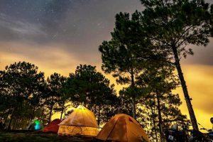 Những trải nghiệm về đêm 'chill phết' ở Đà Lạt