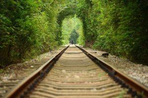 Đường ray xe lửa bỏ hoang phủ đầy cây xanh trở thành đường hầm lãng mạn