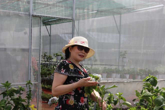"""Hàng chục ngàn du khách đến vườn dâu tây """"độc nhất vô nhị"""" ở Cà Mau"""