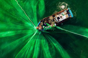 Hình đánh cá Việt Nam và loạt ảnh xanh mát thắng giải quốc tế