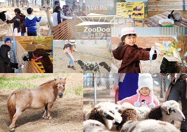 Khám phá 5 khu vui chơi trẻ em ở Đà Lạt