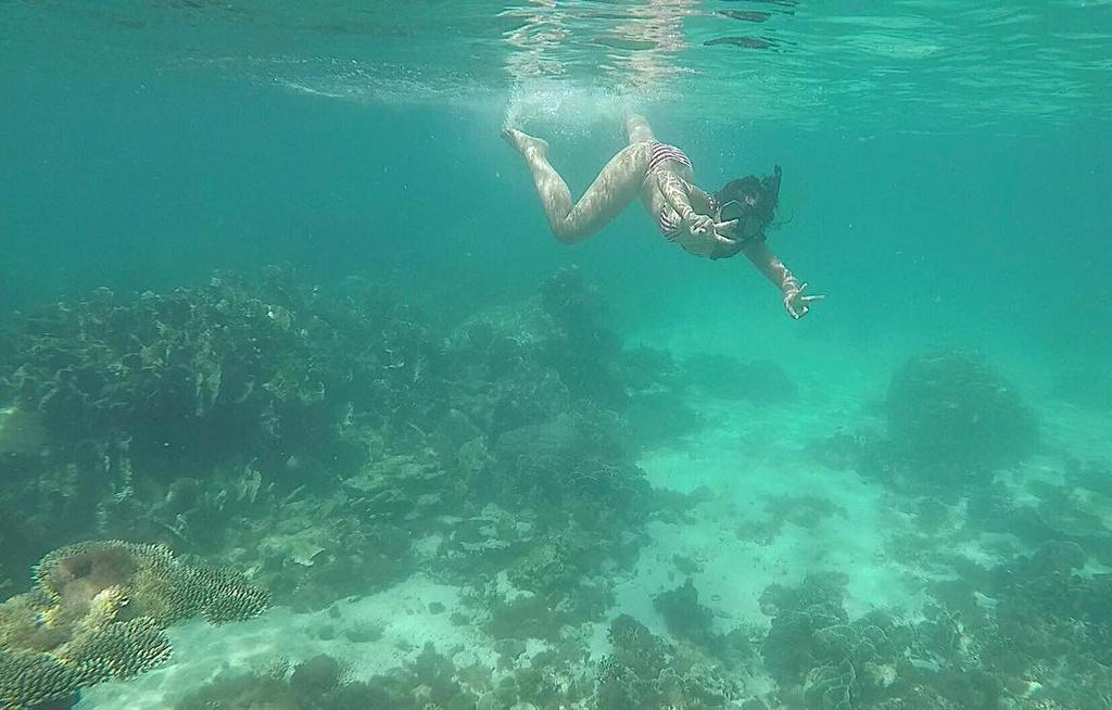 Loạt điểm ngắm san hô đẹp nhất tại Việt Nam