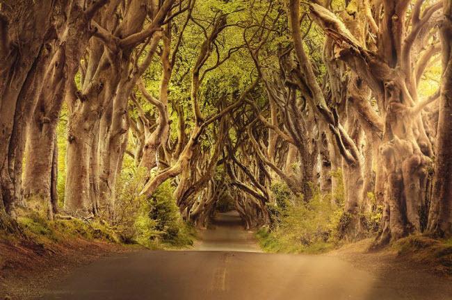 Những địa điểm ẩn chứa vẻ đẹp huyền bí trên Trái đất